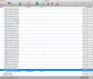 The Downloads Folder
