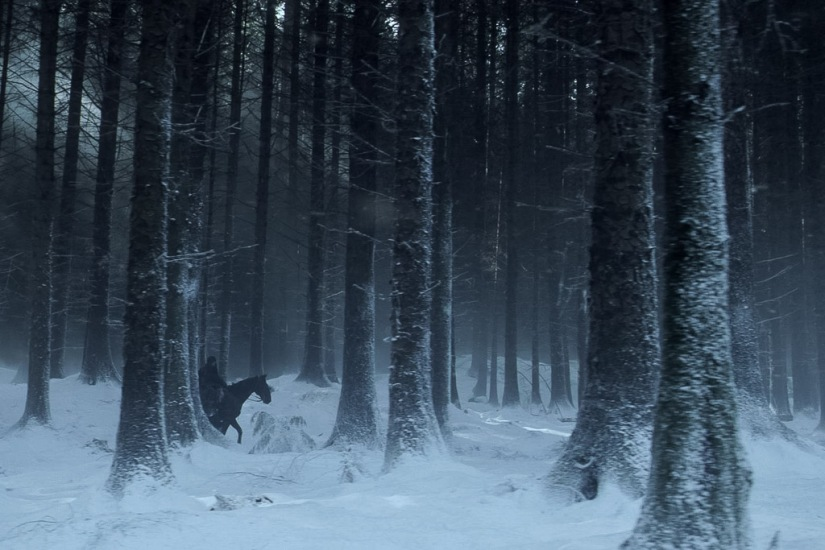 Northern Ireland Game of Thrones Filming Locations : The Haunted Forest : Tollymore Forest : Image copyright of HBO, screencap from Screencapped.net